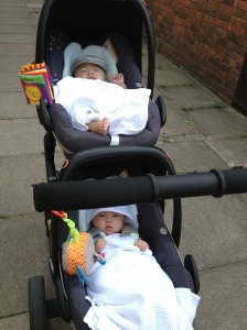 Twins in buggy