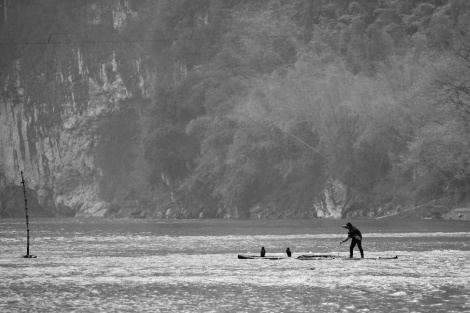 A fishermen was fishing with his two cormorants.
