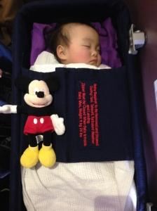 Annabelle's infant cot