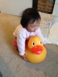 Annabelle still loves her giant duck!