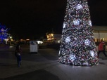 Then again, Ashton stopped and looked at the giant Christmas tree for a long time.