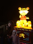 Annabelle really loves the light displays and always wanted pictures of them.