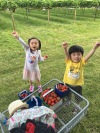 Fruit picking has becoming our family outing every year.