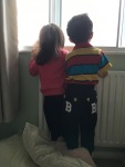 Now they are taller, they are curious about the outside through the window.